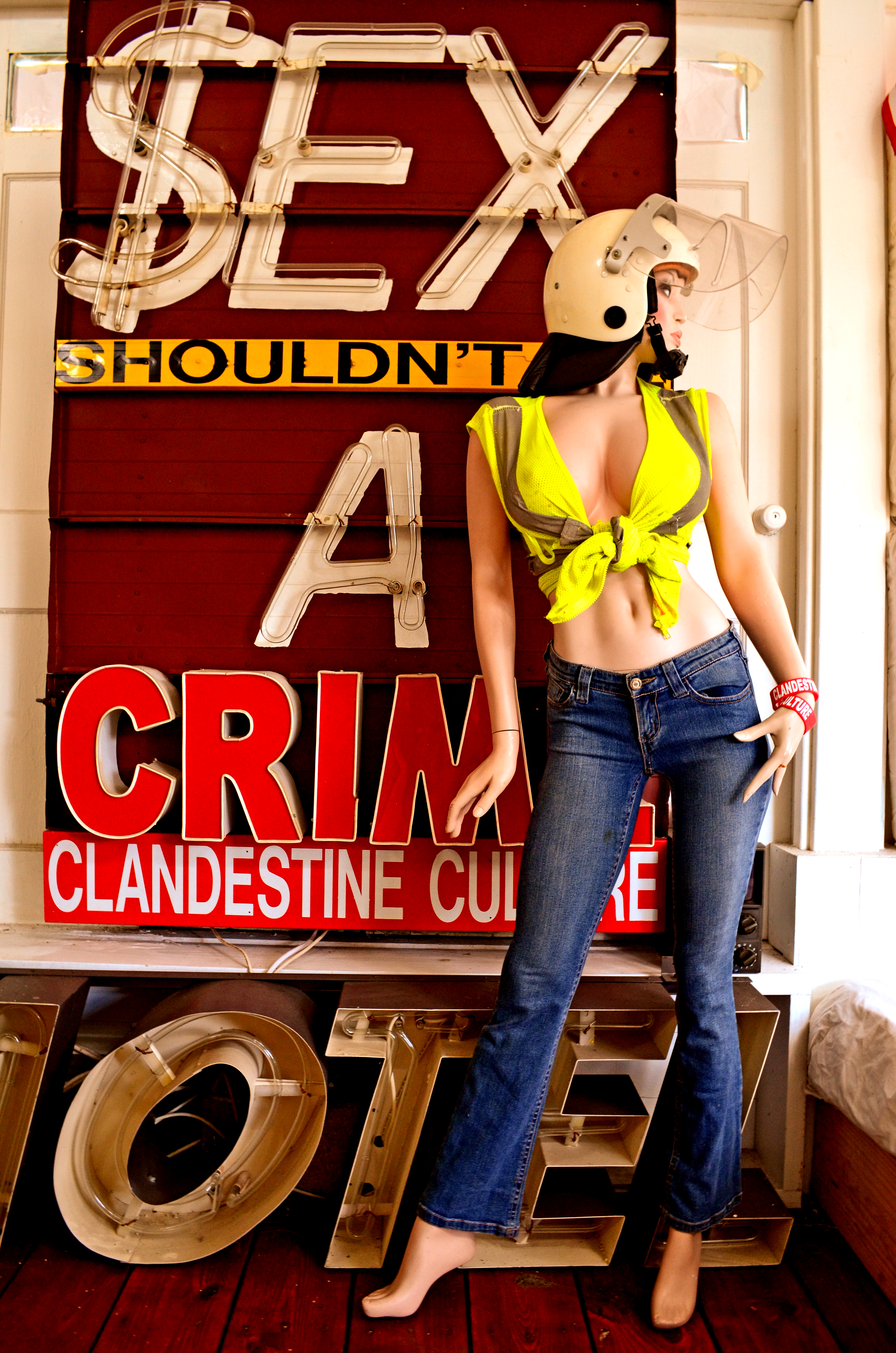 clandestine culture ,Samantha and Sex Shouldnt be a crime